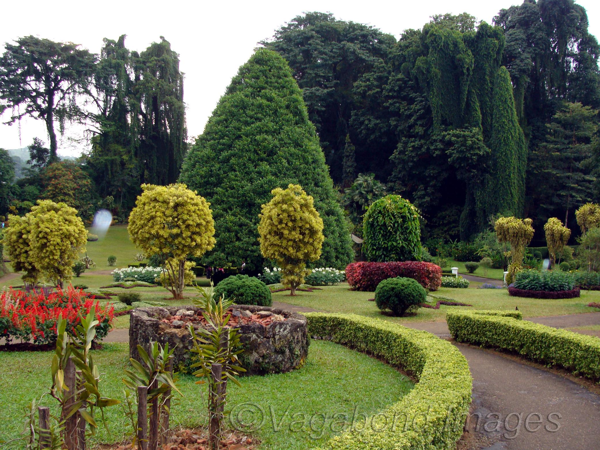 Peradeniya Kandy Much Beyond A Botanical Gardens Vagabond Images