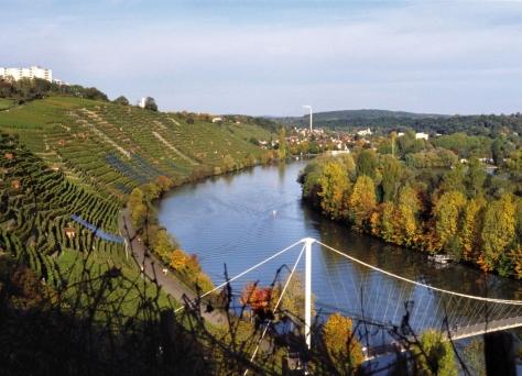 vineyards of stuttgart