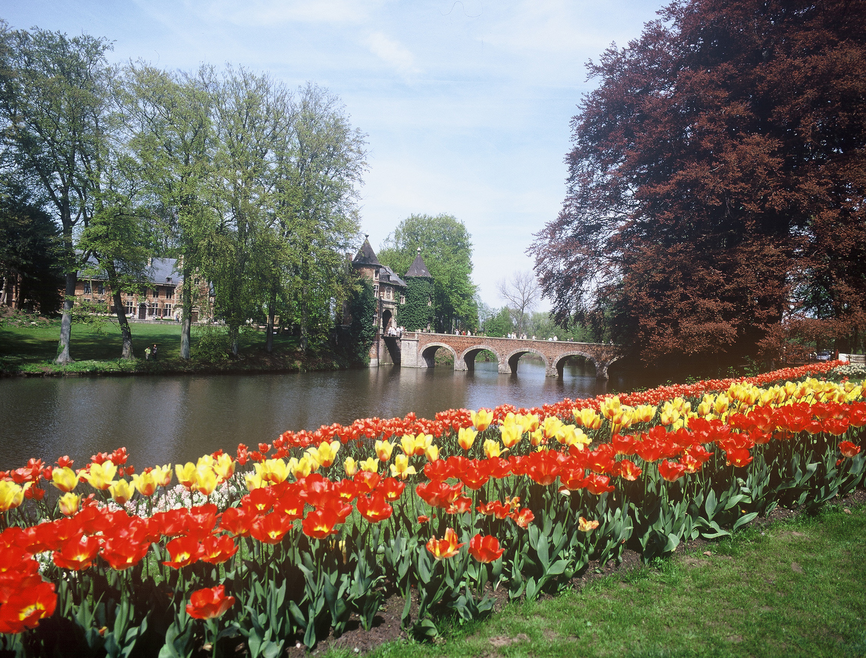 FLORALIA BRUSSELS is ready to bloom this spring | Vagabond ...