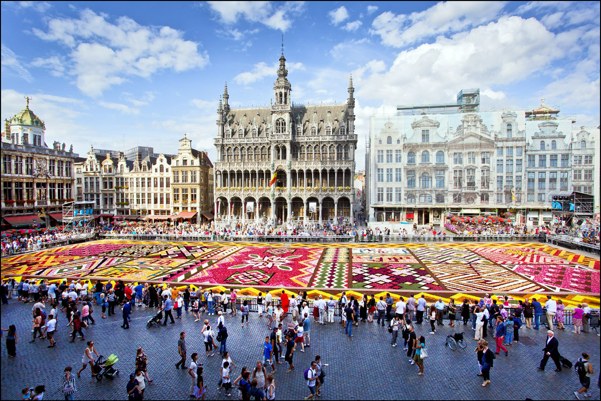 Flower carpet vagabond images - Office de tourisme bruxelles grand place ...