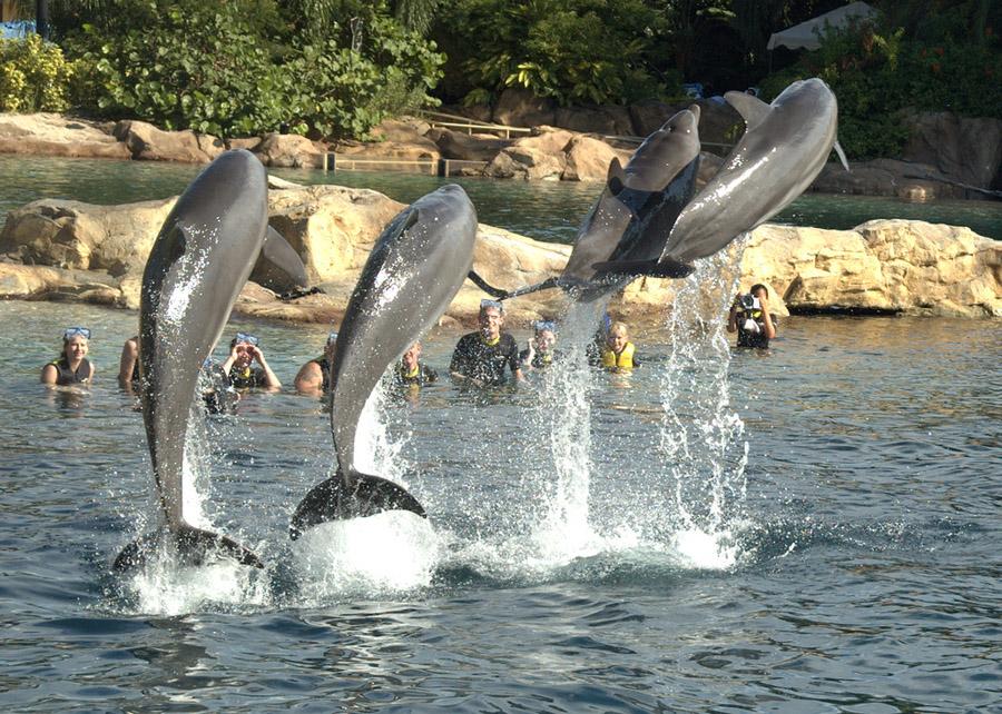 Bangalore Has The Best Amusement Park In India Vagabond Images