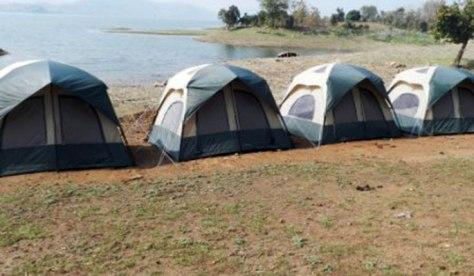 Sulpaneshwar Camping