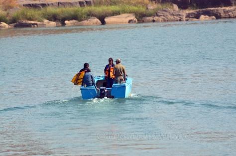 Boat safari at Panna