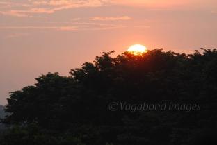 Prambanan Sunset17
