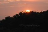 Prambanan Sunset18