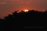 Prambanan Sunset25
