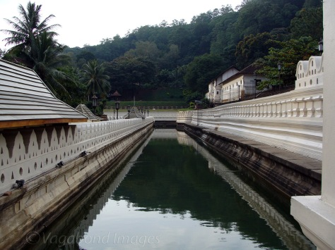 Tooth Relic3