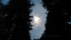 Peeking moon!