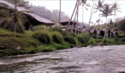 Free flowing Ayung river