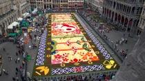 Flower-Carpet-2016_5