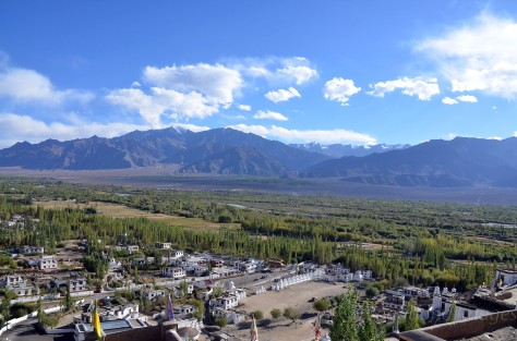Thiksey Monastery4