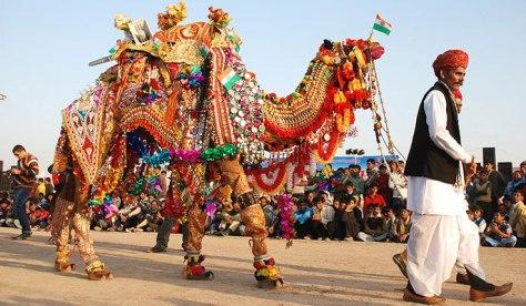 camel-festival-bikaner