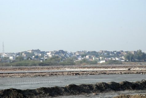 Sambhar lake and the town