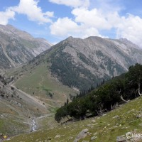 Kashmir Great Lakes : First day trek to Nichnai